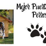 Mejores Puertas Para Perros - Análisis