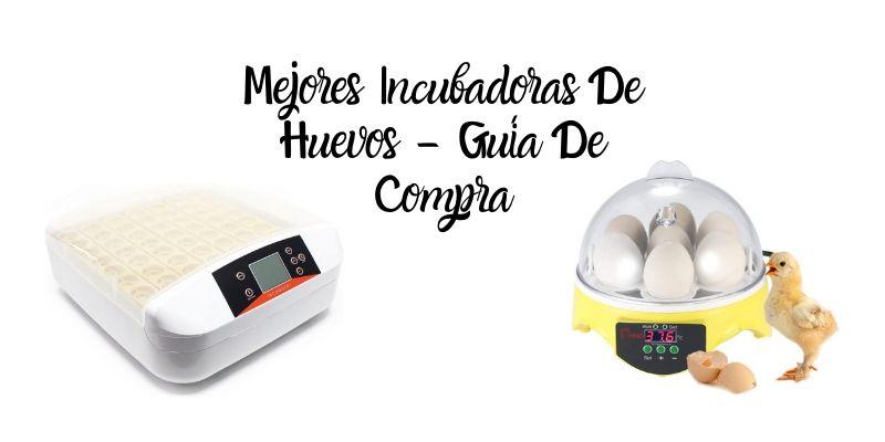 mejores incubadoras de huevos