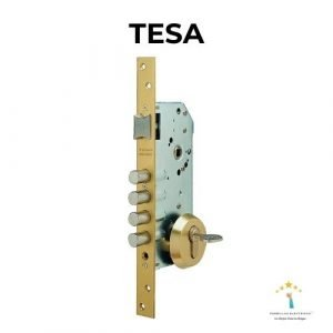 cerradura de seguridad tesa