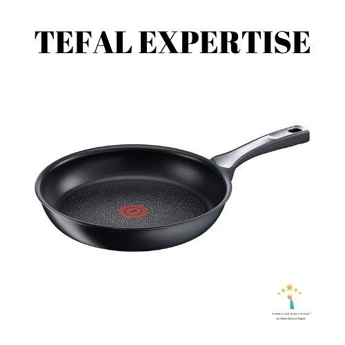 1. Tefal Expertise Revisión