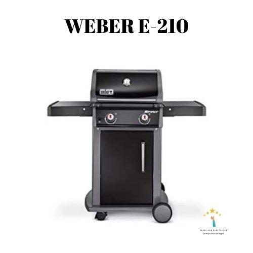 2.Barbacoa E210 Weber