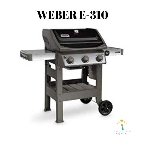 4. Barbacoa Weber E 310