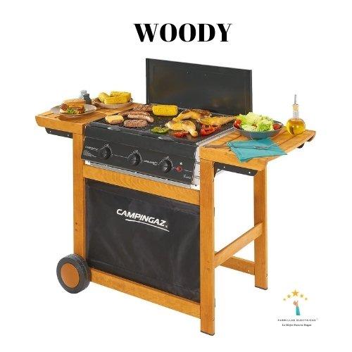5. Barbacoa de gas Woody