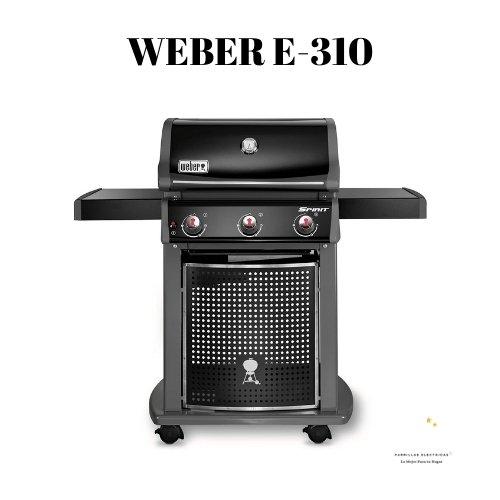 horno WEBER E-310