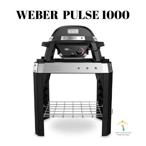 4.  Weber Pulse 1000