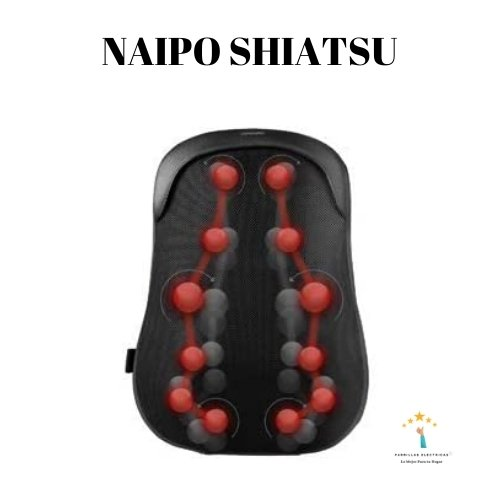 3. Naipo 6163