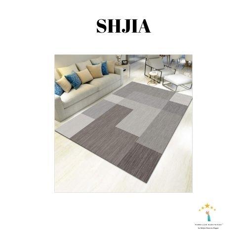 3. Alfombra lavable salón Shjia