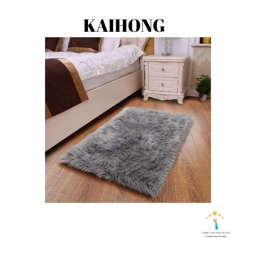 2. Kaihong